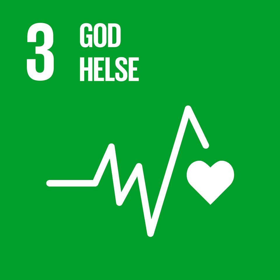 FNs bærekraftsmål  3
