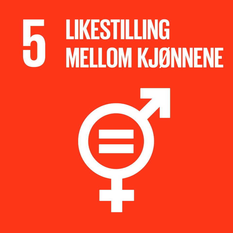 FNs bærekraftsmål  5