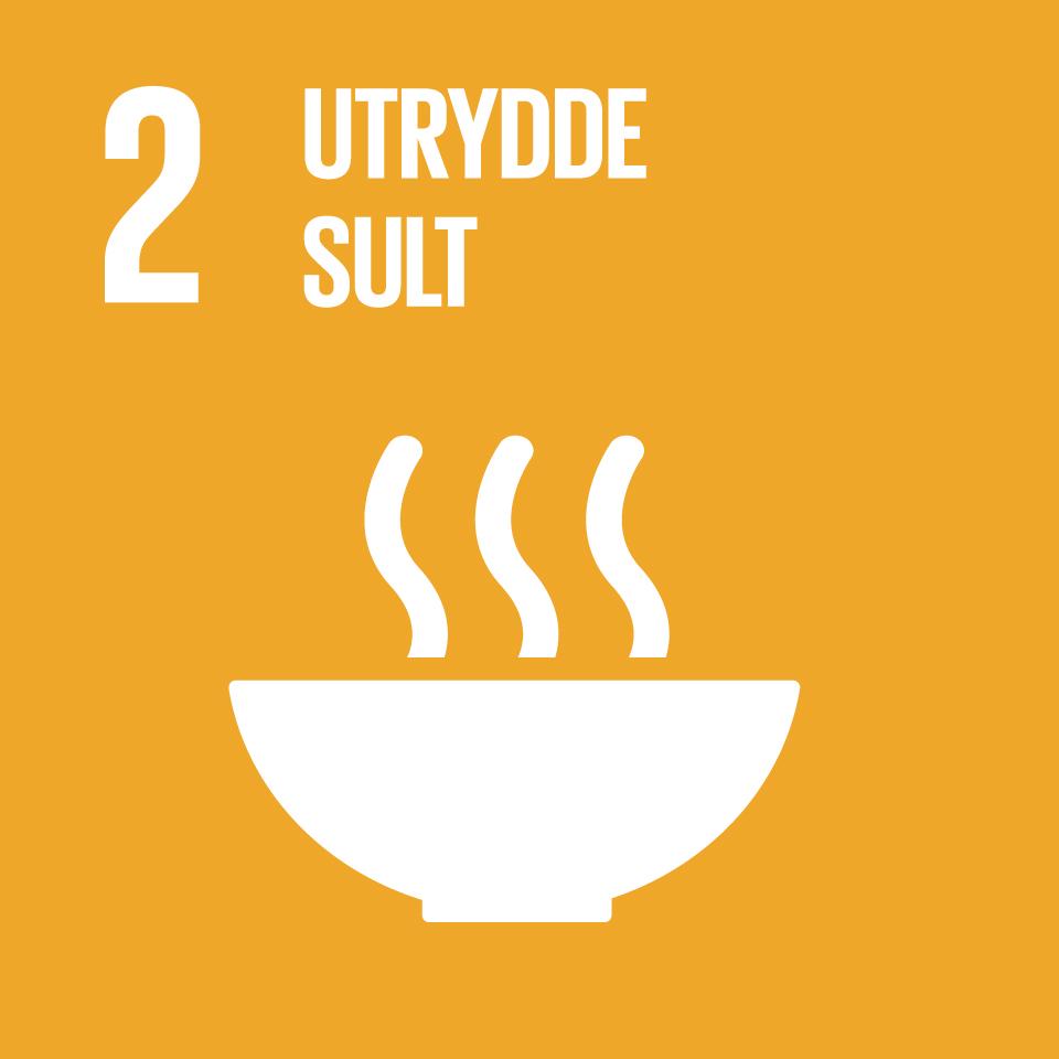 FNs bærekraftsmål  2
