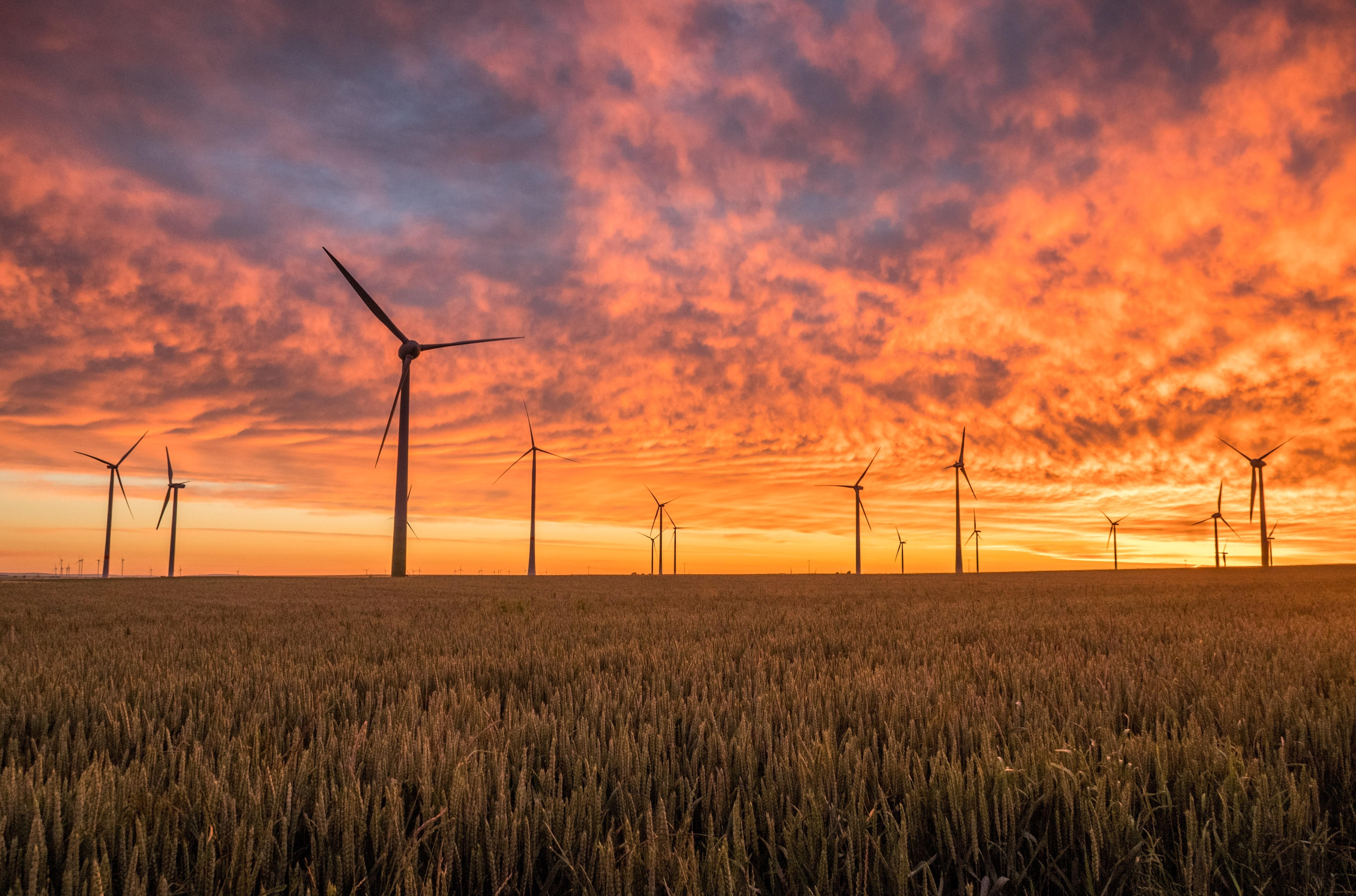 Når er egentlig energi- og matproduksjon bærekraftig? Foto: Karsten Wurth/Unsplash.