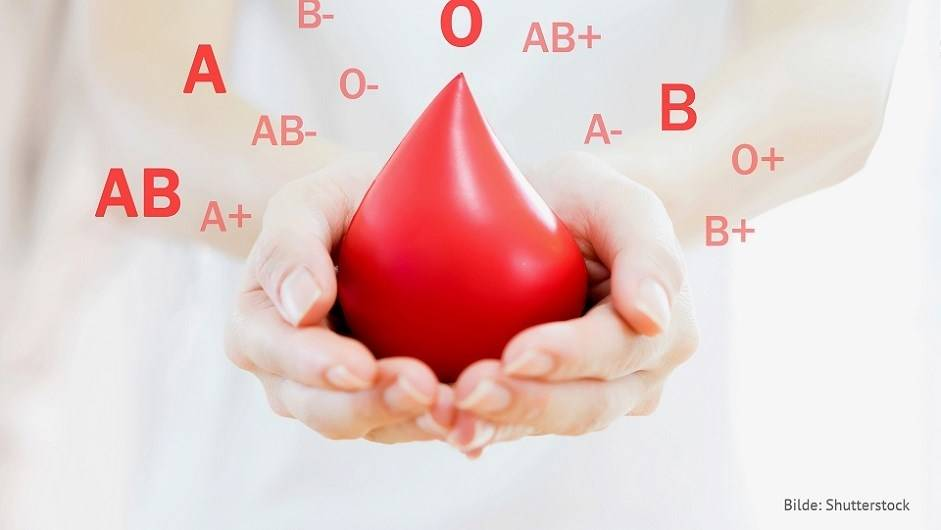 Verdens blodgiverdag