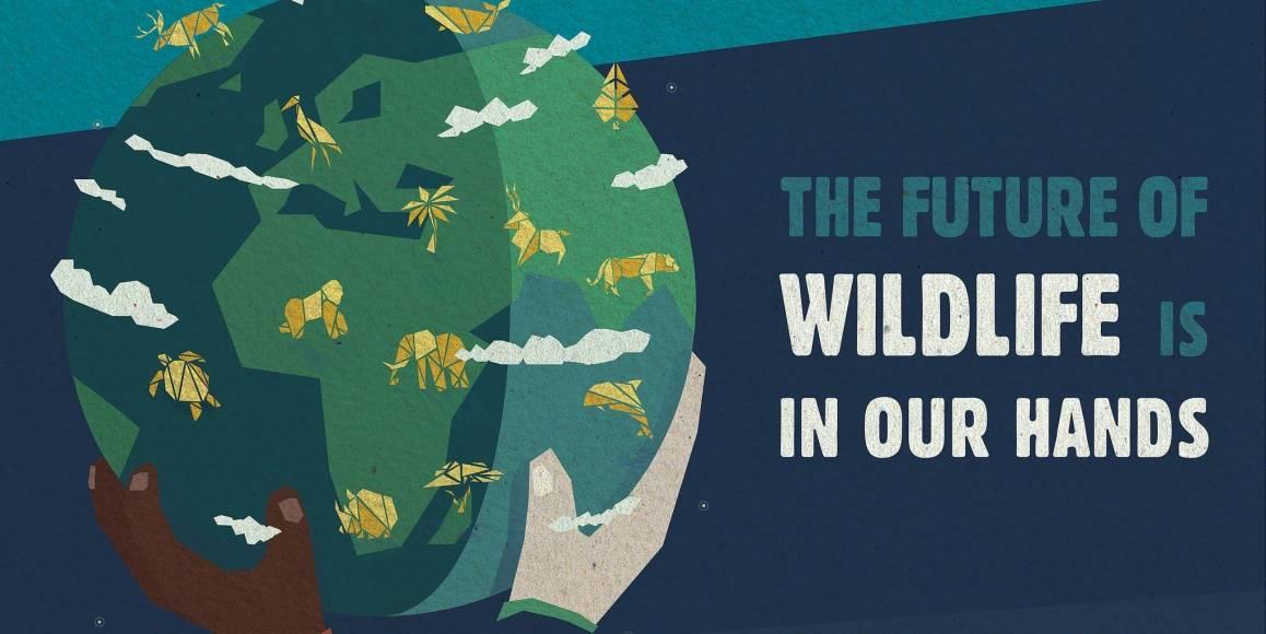 """FNs offisielle plakat for verdens villmarksdag. Bildet viser en jordklode med ville dyr som holdes av to mennesker, med teksten """"The future of wildlife is in our hands"""". Design: Amaya Delmas."""