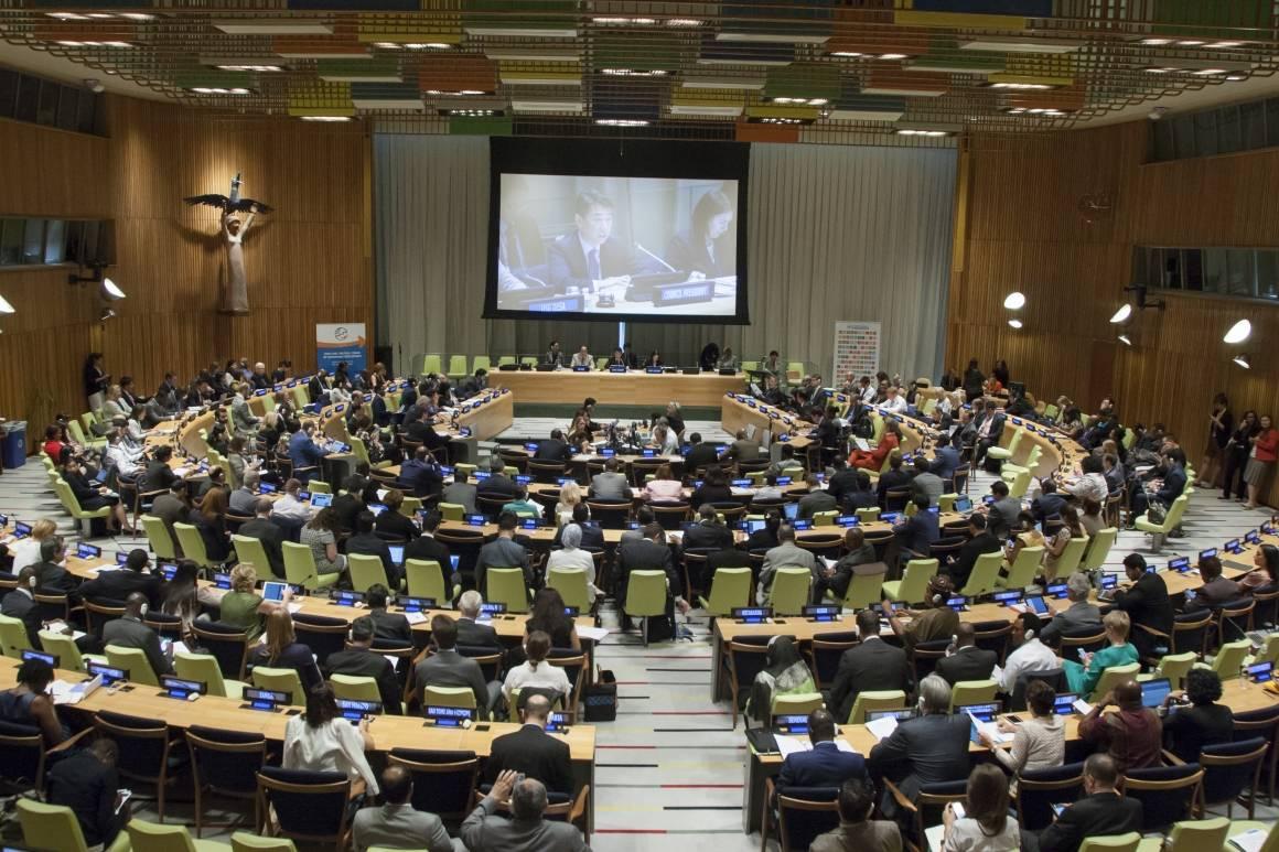 Fra ECOSOCs høynivåmøte om bærekraftig utvikling.