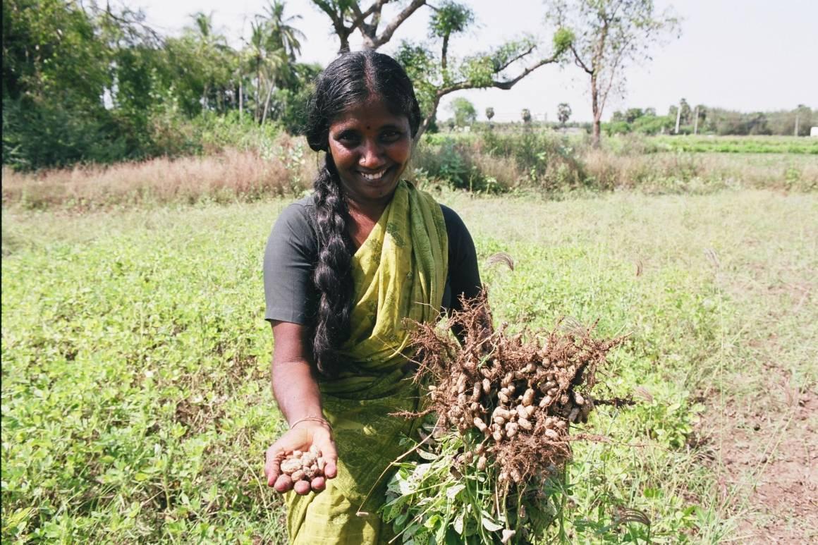 De fleste kvinner i verden er ikke inkludert i arbeidsmarkedet. Bildet viser Neela, grunnleggeren av et jordbruksprosjekt for kvinner i India. Prosjektet får støtte fra ILO. Foto: Crozet/ILO (2002)