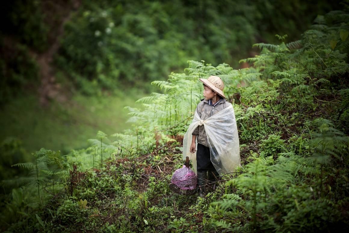 Et barn i Sapa, Vietnam. Foto: (UN Photo/Kibae Park)