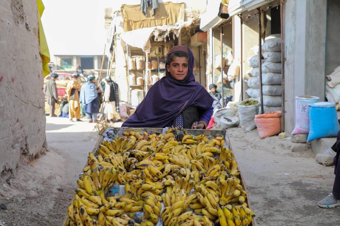 Tolv år gamle Rafiqullah selger bananer i Tarinkot, hovedstaden i Uruzgan-provinsen i Afghanistan. På grunn av fattigdom og mangel på utdanningsmuligheter får ikke Rafiqulla gå på skolen. ©UNICEF/Omid Fazel