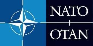 NATO er et eksempel på en mellomstatlig organisasjon. Det betyr at NATO kan stilles for retten i en folkerettslig domstol.
