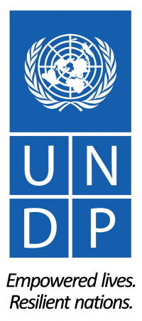 Logo for UNDP